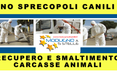 Sprecopoli Canili