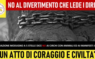 NO al circo con animali